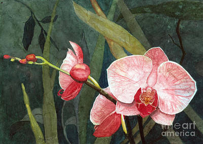 Poster featuring the painting Orchid Trio 2 by Barbara Jewell