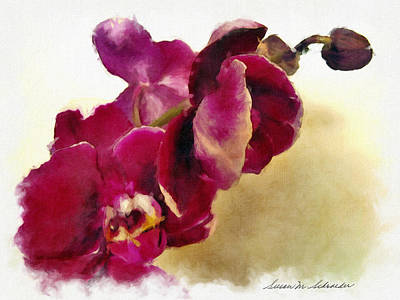 Orchids No. 5 Poster by Susan Schroeder