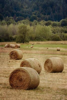 Oregon Hay Bales Poster