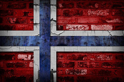 Organic Norway Flag Poster by Daniel Hagerman