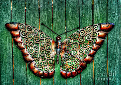 Ornamental Butterfly By Kaye Menner Poster