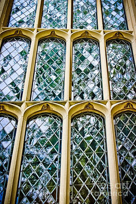 Ornate Leaded Lights - Window Poster by Colleen Kammerer