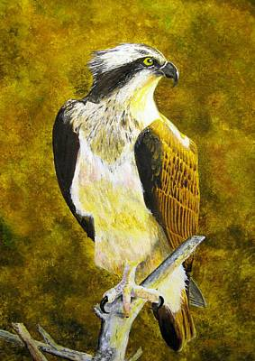 Poster featuring the painting Osprey Profile by Stan Tenney