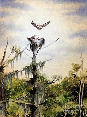 Ospreys Nesting Wakulla River Poster