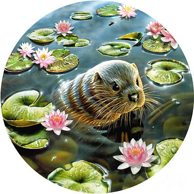 Otter In Water Lilies Poster by Adrian Chesterman