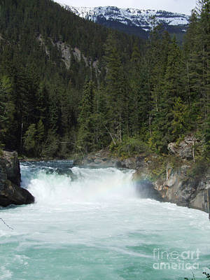 Overlander Falls - Fraser River Poster by Phil Banks