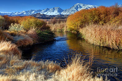 Owens River And Eastern Sierra Nevada Mountains Poster by Gary Whitton