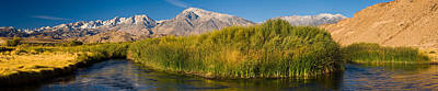 Owens River Flowing In Front Poster by Panoramic Images