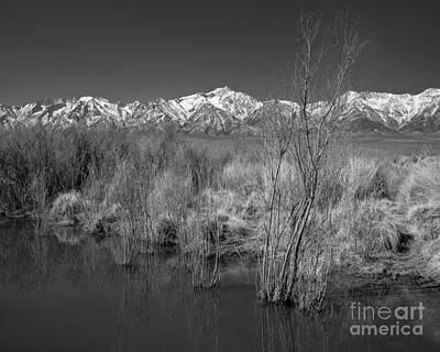 Owens Valley Poster by Don Hall
