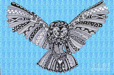 Owl In Flight Blue Sky Poster