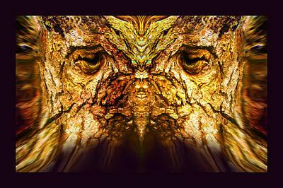 Owl Tree Poster