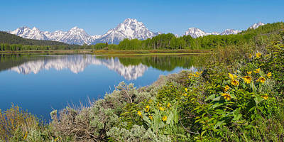 Poster featuring the photograph Oxbow Bend Wildflowers In Spring by Aaron Spong