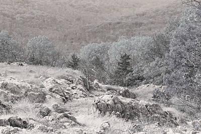 Ozark Glade On Taum Sauk Mountain Poster by Greg Matchick