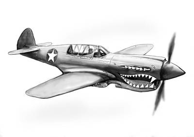P-40 N Warhawh Airplane Drawing Art Poster Poster by Kim Wang