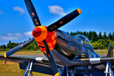 P-51 Mustang - Speedball Alice Poster by David Patterson