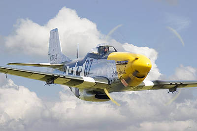 P51 Ferocious Frankie Poster by Pat Speirs