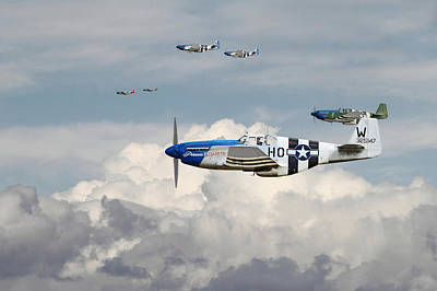 P51 Mustang - Blue Noses - 352nd Fg Poster by Pat Speirs
