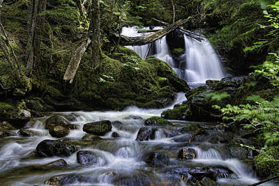 Packer Falls And Creek Poster