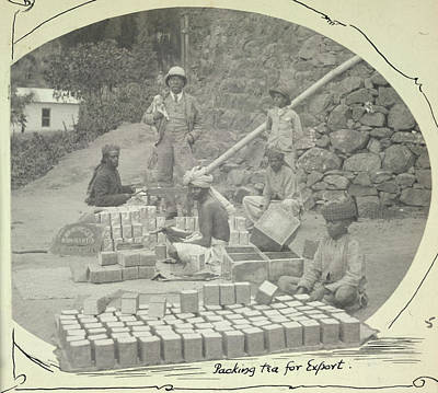 Packing Tea For Export Poster by British Library