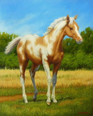 Poster featuring the painting Paint Foal by Margaret Stockdale