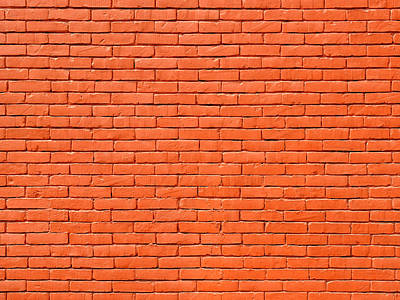 Painted Brick Wall Poster