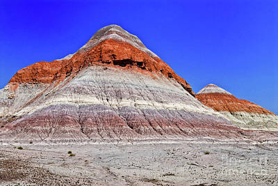 Poster featuring the photograph Painted Desert National Park by Bob and Nadine Johnston