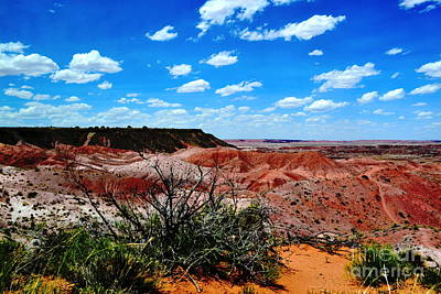 Poster featuring the photograph Painted Desert by Utopia Concepts