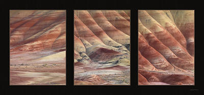 Painted Hills Triptych Poster by Leland D Howard