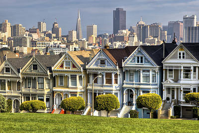 Painted Ladies Poster by Chris Austin