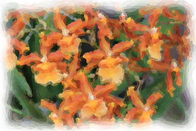 Painted Orchids Poster