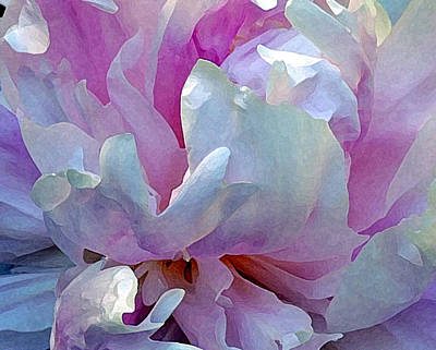 Painted Peony Poster by Jodie Marie Anne Richardson Traugott          aka jm-ART