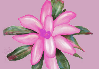 Painted Pink Poster by Rosalie Scanlon