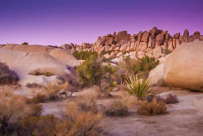 Painterly Desert Poster