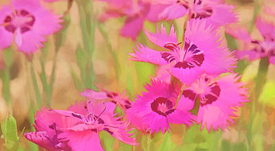 Painting Of Pink Flowers In A Garden Poster by Ron Harris