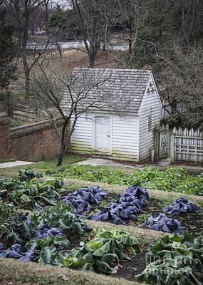 Palace Kitchen Winter Garden Poster