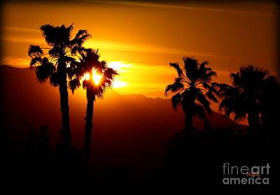 Palm Desert Sunset Poster
