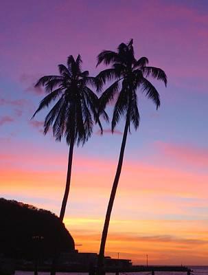 Palm Tree Sunset At San Juan Del Sur Poster by Michelle Eshleman