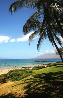 Palm Trees On A Maui Beach Poster