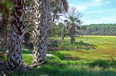 Poster featuring the photograph Palm Trees On Hunting Island by Ellen Tully