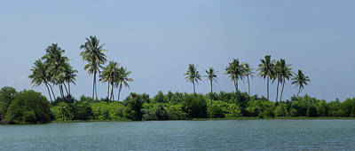 Palm Trees On Small Island Along Coast Poster by Panoramic Images