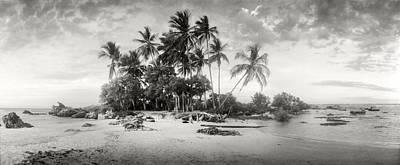Palm Trees On The Beach, Morro De Sao Poster