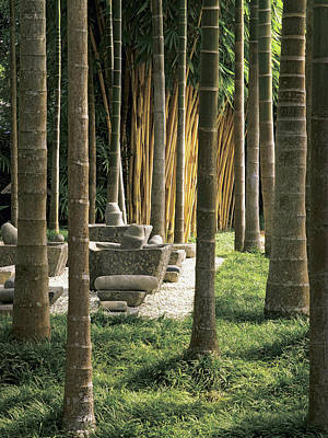Palm Trees With Mortar And Pestles In Garden Poster