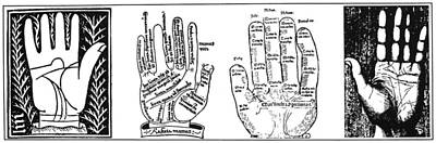 Palmistry Chart Poster by Granger