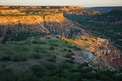 Palo Duro Canyon State Park, Texas Poster by Larry Ditto