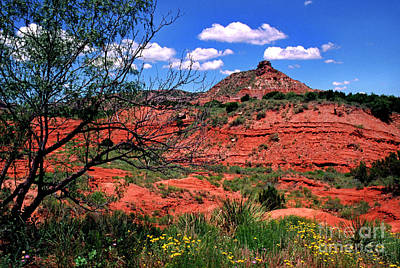Palo Duro Canyon State Park Poster
