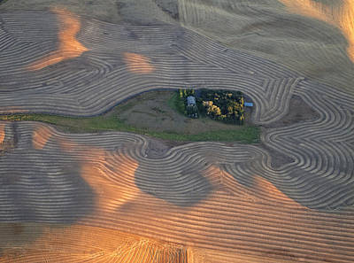 Palouse Contours IIi Poster by Latah Trail Foundation