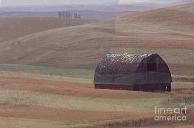 Palouse Country U S A Poster by Sharon Elliott
