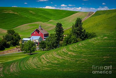 Palouse Farm Landscape Poster by Inge Johnsson