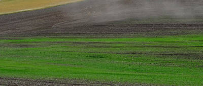 Palouse Patchwork 4 Poster by Anne Mott