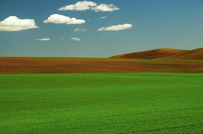 Palouse View In Whitman County Poster
